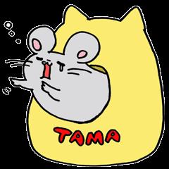 tamatin