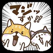【無料スタンプ】新キャラでたよ!柴太郎&はちこ第3弾